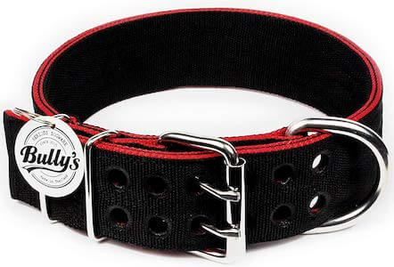 Heavy Duty Nylon Pit Bull Collar