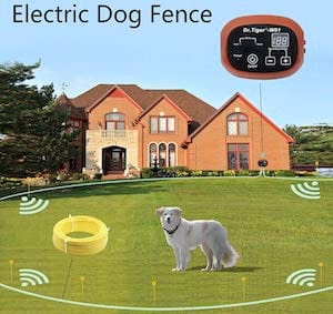 DR. tiger wireless dog fence