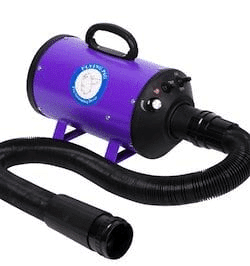 Flying pig pet dryer
