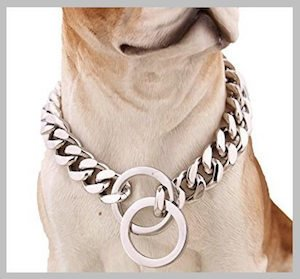 INSEA Stainless Steel Chain for Pitbulls