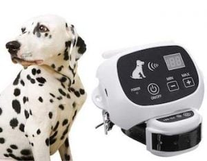 Qiaostore Wireless Dog Fence System