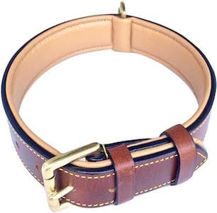 Soft Touch leather dog collar for pitbulls