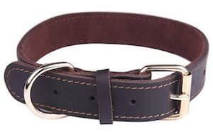Taglory leather dog collar