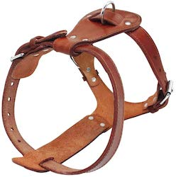 leather pitbull harnesses