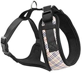 pitbull puppy harness