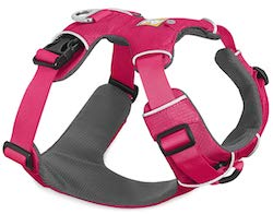 Dog Harness for dachshunds