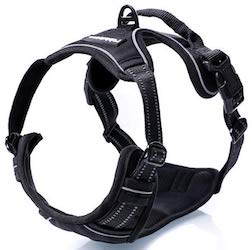 Rabbitgoo No Pull Dog Harness for dachshund