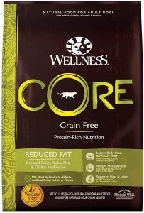 Wellness CORE Natural Grain Free