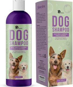 HONEYDEW Oatmeal Dog Shampoo–Best Overall