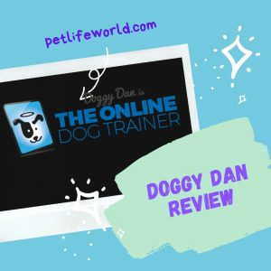 Doggy Dan Review