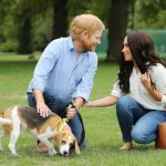 Prince Harry and Megan Markle's Dog