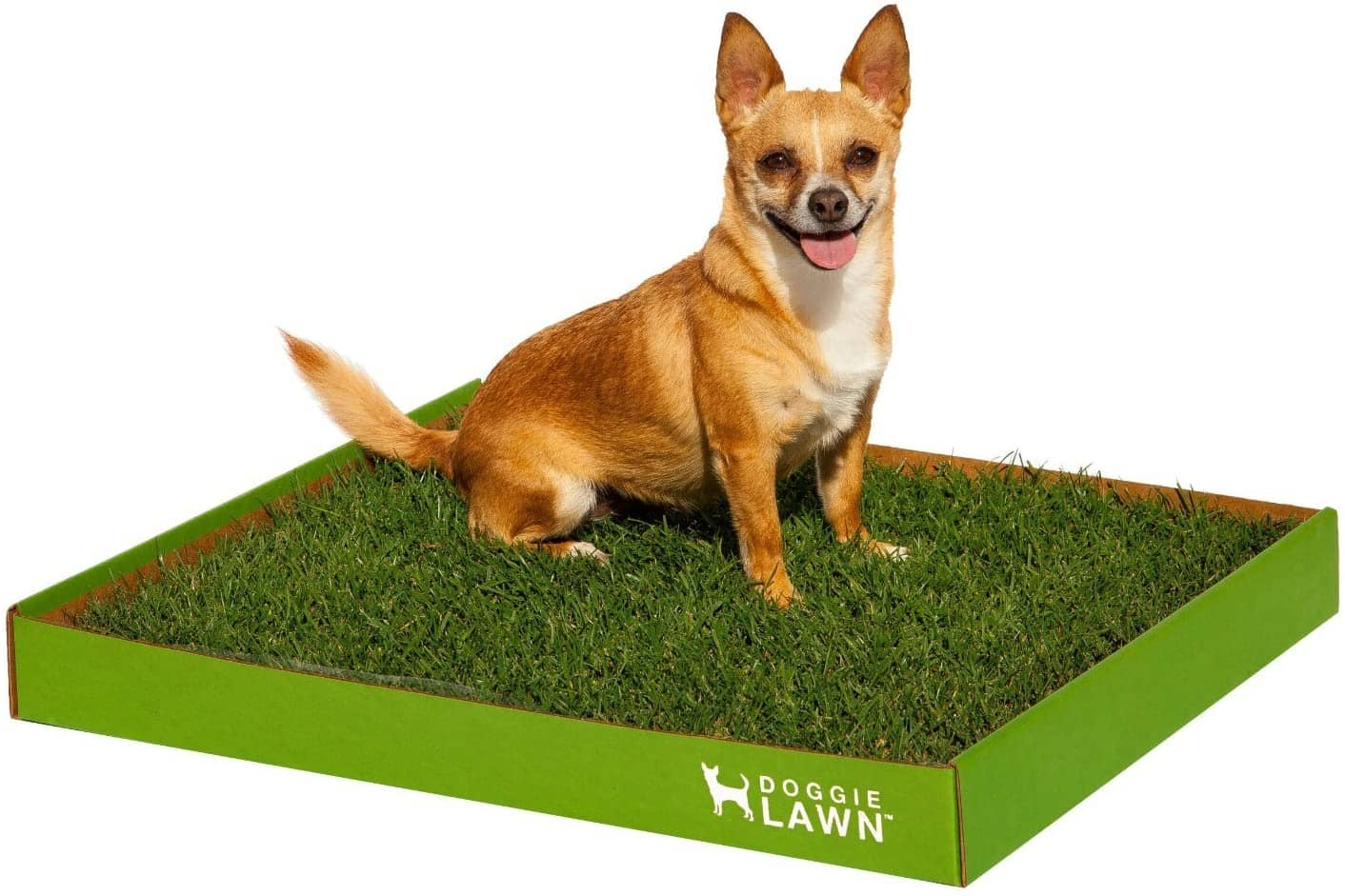 Artificial Grass Potty Systems